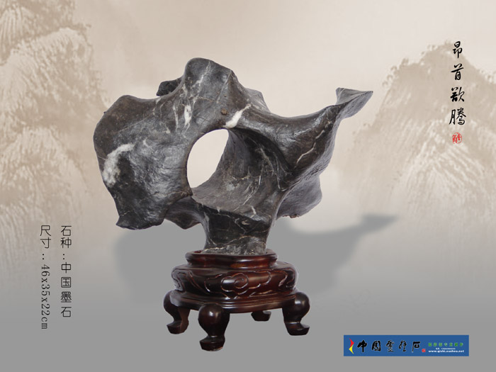 玲珑秀 - 千岛湖奇石 - 千岛湖奇石之家